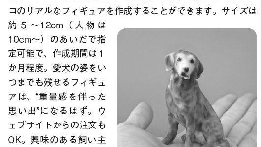 Wan 2016/3月号